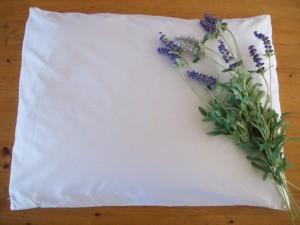L-OMA Organic Buckwheat Pillow
